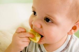 Nutricion dieta infantil